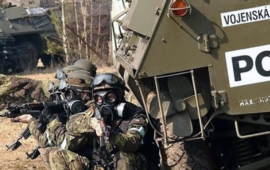 Czech Defence News of the Week (8 February - 15 February 2019)